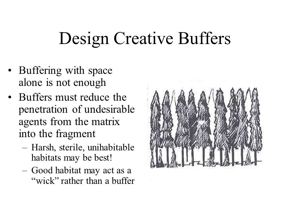 Design Creative Buffers Buffering with space alone is not enough Buffers must reduce the penetration of undesirable agents from the matrix into the fragment –Harsh, sterile, unihabitable habitats may be best.