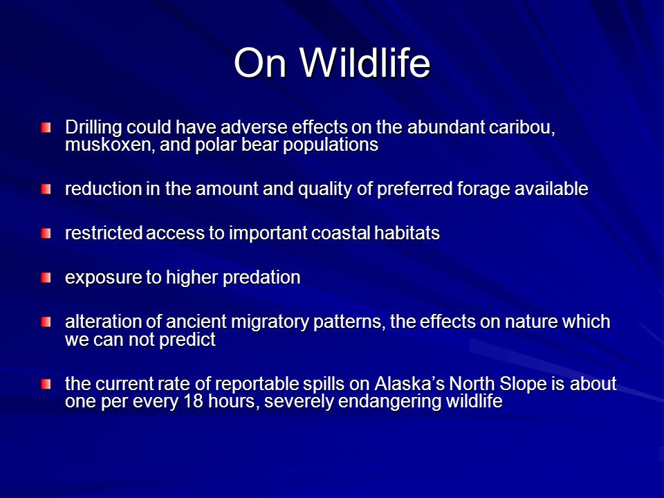 On Wildlife Drilling could have adverse effects on the abundant caribou, muskoxen, and polar bear populations reduction in the amount and quality of preferred forage available restricted access to important coastal habitats exposure to higher predation alteration of ancient migratory patterns, the effects on nature which we can not predict the current rate of reportable spills on Alaska's North Slope is about one per every 18 hours, severely endangering wildlife