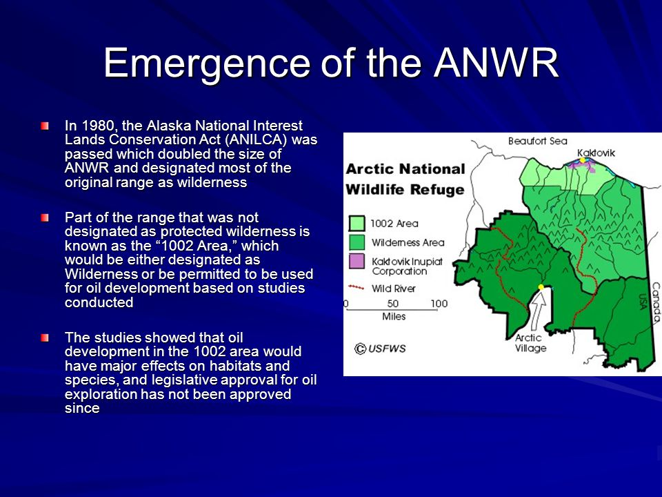 Emergence of the ANWR In 1980, the Alaska National Interest Lands Conservation Act (ANILCA) was passed which doubled the size of ANWR and designated most of the original range as wilderness Part of the range that was not designated as protected wilderness is known as the 1002 Area, which would be either designated as Wilderness or be permitted to be used for oil development based on studies conducted The studies showed that oil development in the 1002 area would have major effects on habitats and species, and legislative approval for oil exploration has not been approved since