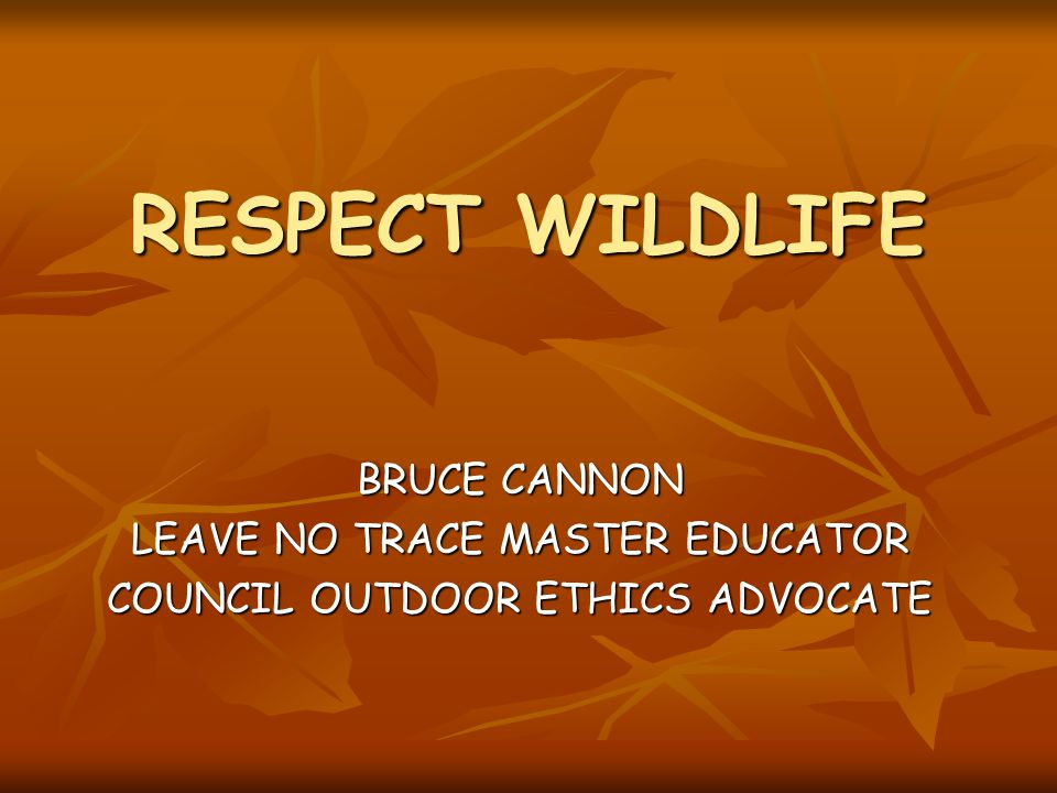 RESPECT WILDLIFE BRUCE CANNON LEAVE NO TRACE MASTER EDUCATOR COUNCIL OUTDOOR ETHICS ADVOCATE