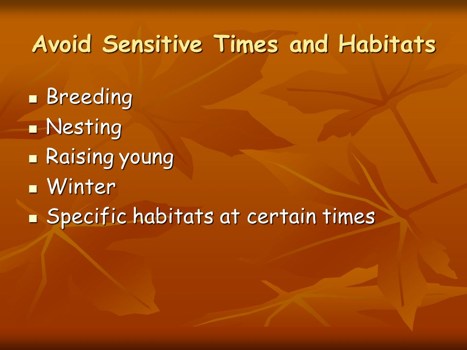 Avoid Sensitive Times and Habitats Breeding Breeding Nesting Nesting Raising young Raising young Winter Winter Specific habitats at certain times Specific habitats at certain times