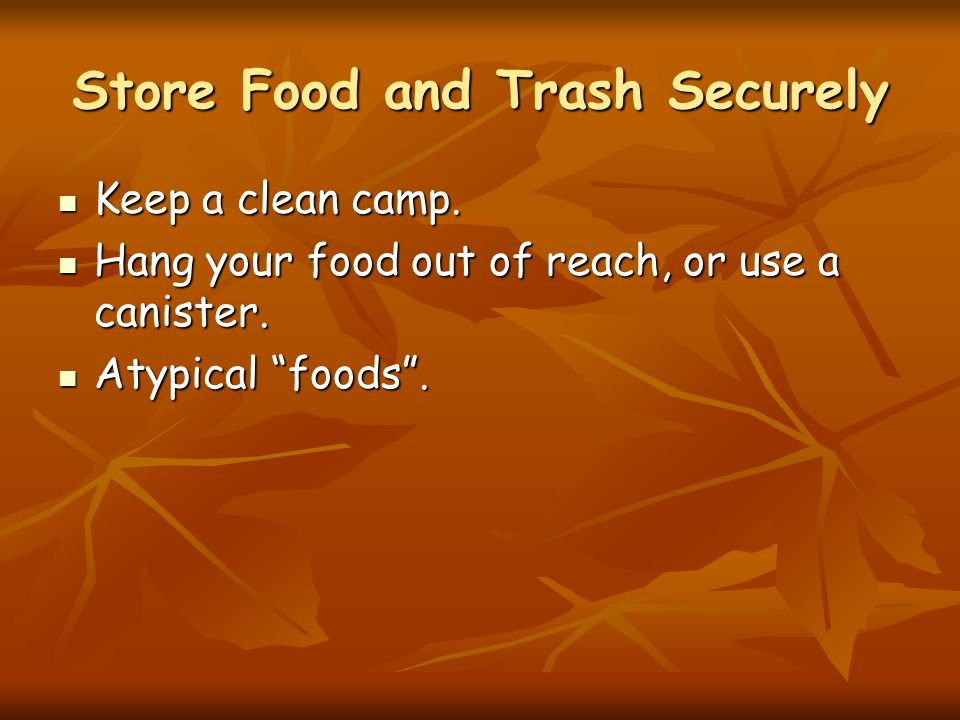 Store Food and Trash Securely Keep a clean camp. Keep a clean camp.