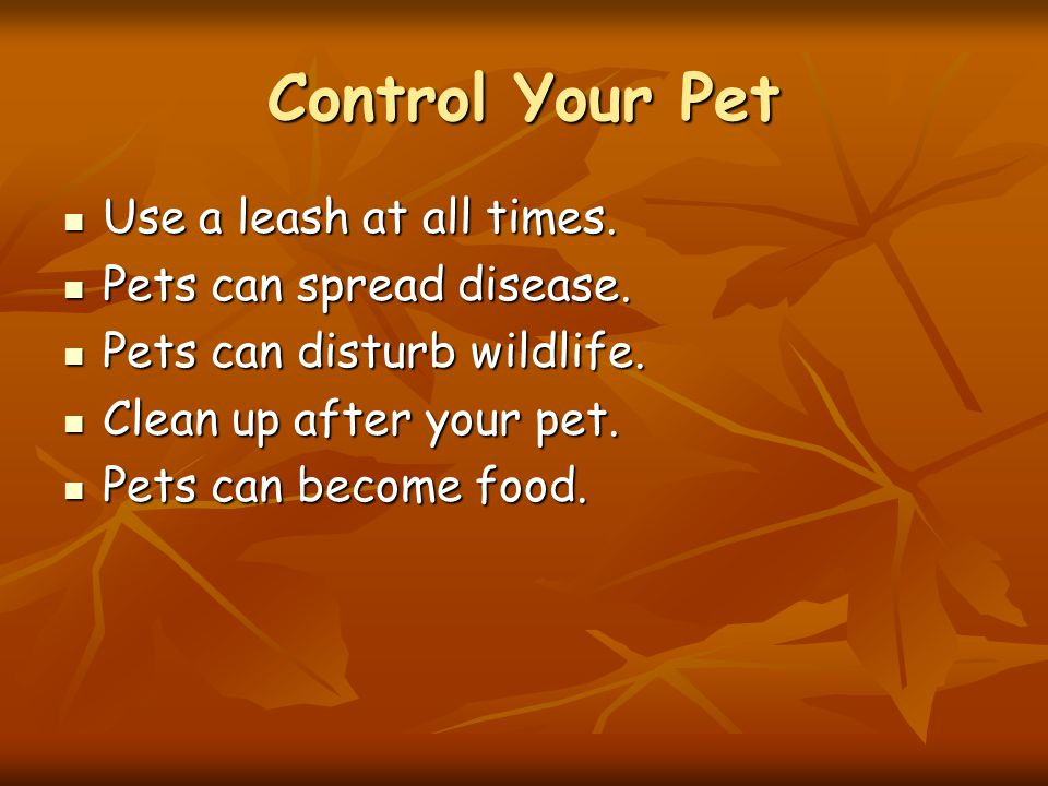 Control Your Pet Use a leash at all times. Use a leash at all times.