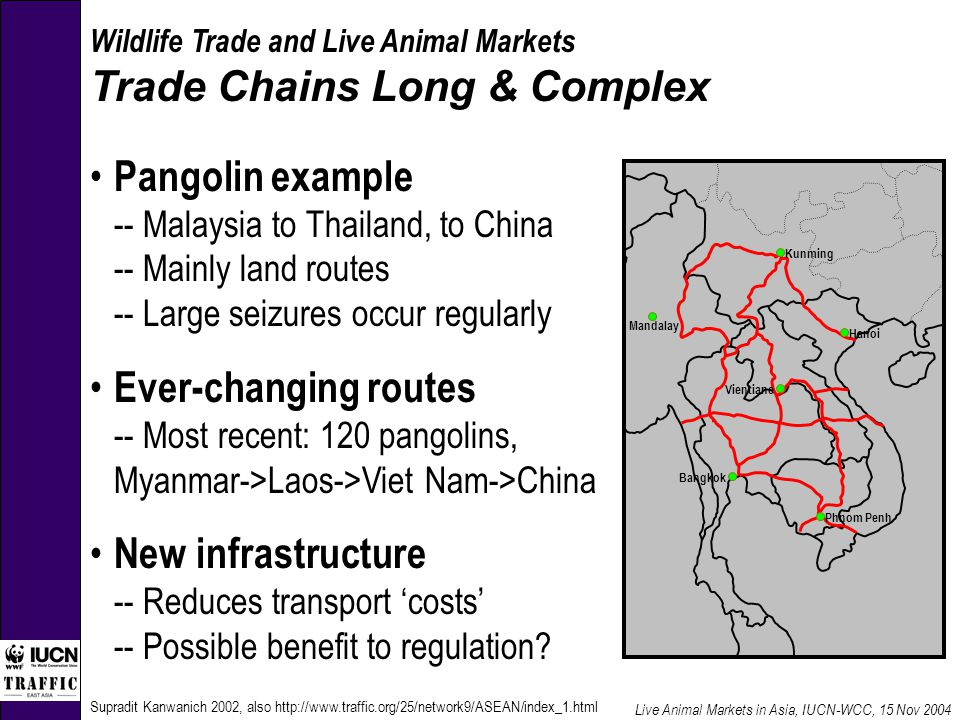 Supradit Kanwanich 2002, also http://www.traffic.org/25/network9/ASEAN/index_1.html Smuggling routes of Pangolin Kunming Hanoi Phnom Penh Bangkok Vientiane Mandalay Wildlife Trade and Live Animal Markets Trade Chains Long & Complex Pangolin example -- Malaysia to Thailand, to China -- Mainly land routes -- Large seizures occur regularly Ever-changing routes -- Most recent: 120 pangolins, Myanmar->Laos->Viet Nam->China New infrastructure -- Reduces transport 'costs' -- Possible benefit to regulation.