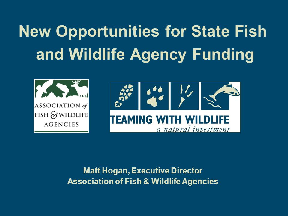 New Opportunities for State Fish and Wildlife Agency Funding Matt Hogan, Executive Director Association of Fish & Wildlife Agencies
