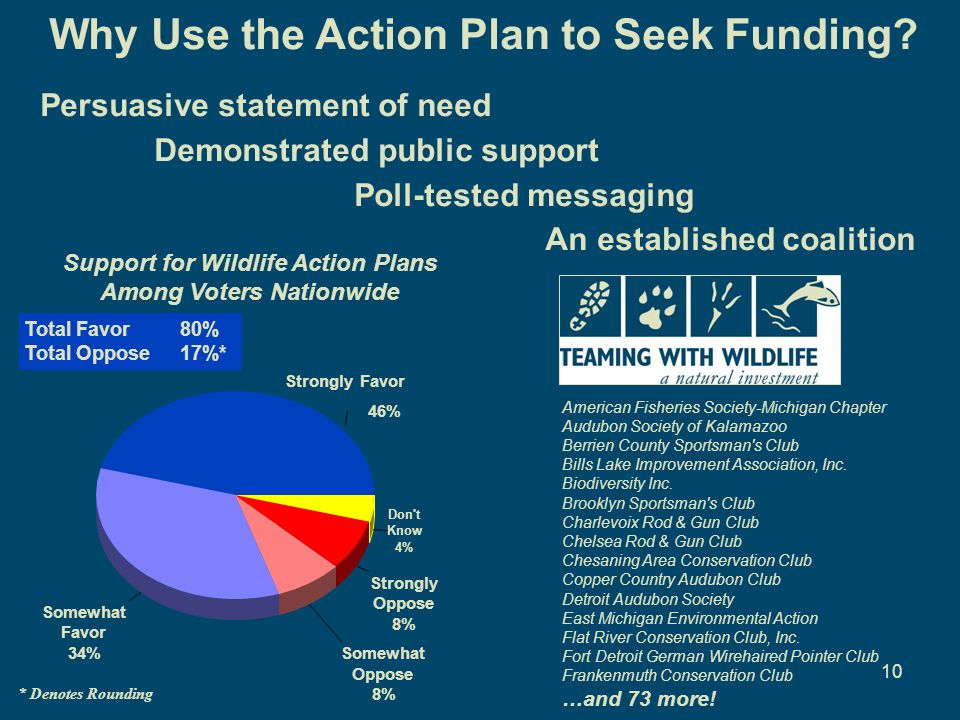 10 Why Use the Action Plan to Seek Funding? Persuasive statement of need Demonstrated public support Poll-tested messaging An established coalition St