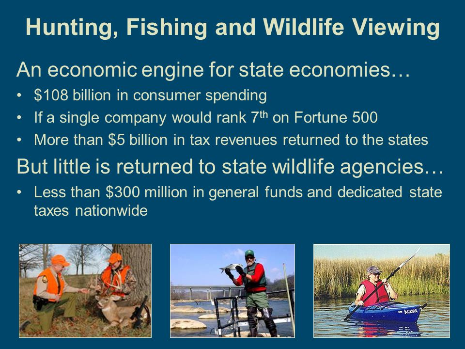 4 Hunting, Fishing and Wildlife Viewing An economic engine for state economies… $108 billion in consumer spending If a single company would rank 7 th on Fortune 500 More than $5 billion in tax revenues returned to the states But little is returned to state wildlife agencies… Less than $300 million in general funds and dedicated state taxes nationwide