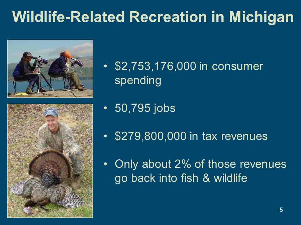 5 Wildlife-Related Recreation in Michigan $2,753,176,000 in consumer spending 50,795 jobs $279,800,000 in tax revenues Only about 2% of those revenues