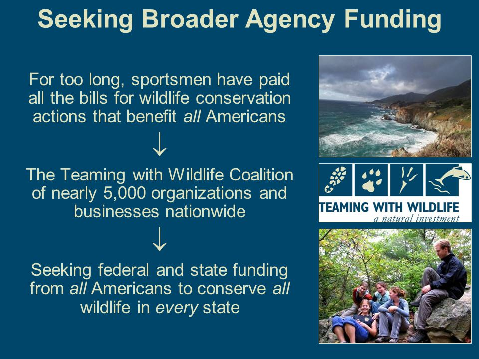 6 Seeking Broader Agency Funding For too long, sportsmen have paid all the bills for wildlife conservation actions that benefit all Americans  The Teaming with Wildlife Coalition of nearly 5,000 organizations and businesses nationwide  Seeking federal and state funding from all Americans to conserve all wildlife in every state