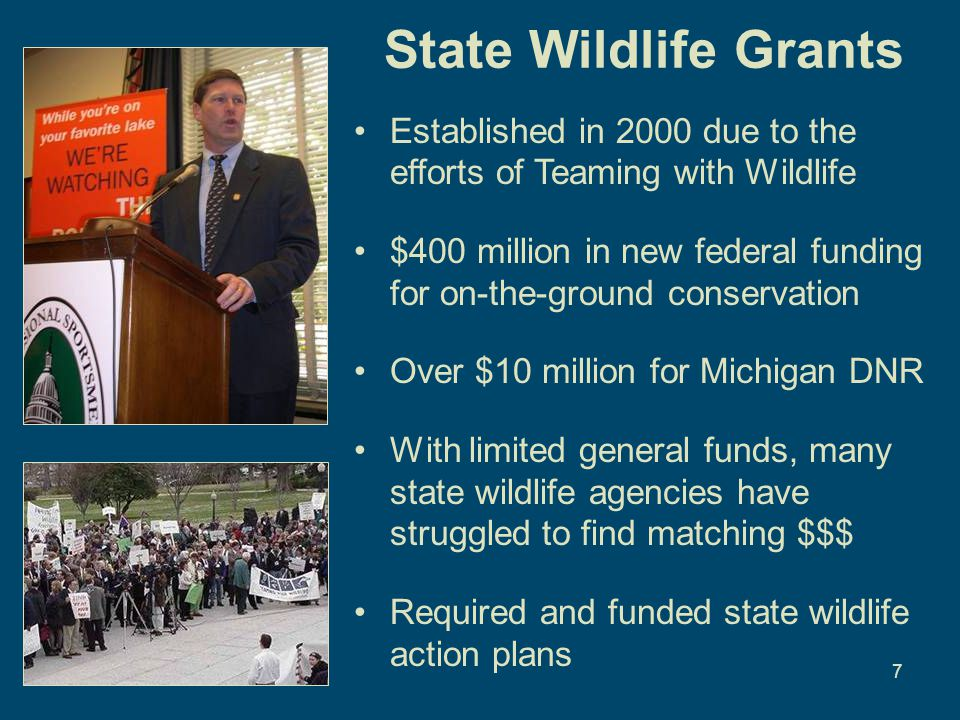 7 State Wildlife Grants Established in 2000 due to the efforts of Teaming with Wildlife $400 million in new federal funding for on-the-ground conservation Over $10 million for Michigan DNR With limited general funds, many state wildlife agencies have struggled to find matching $$$ Required and funded state wildlife action plans