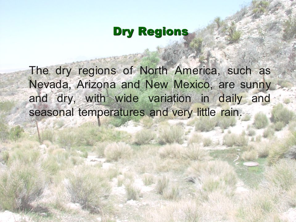 Dry Regions The dry regions of North America, such as Nevada, Arizona and New Mexico, are sunny and dry, with wide variation in daily and seasonal tem