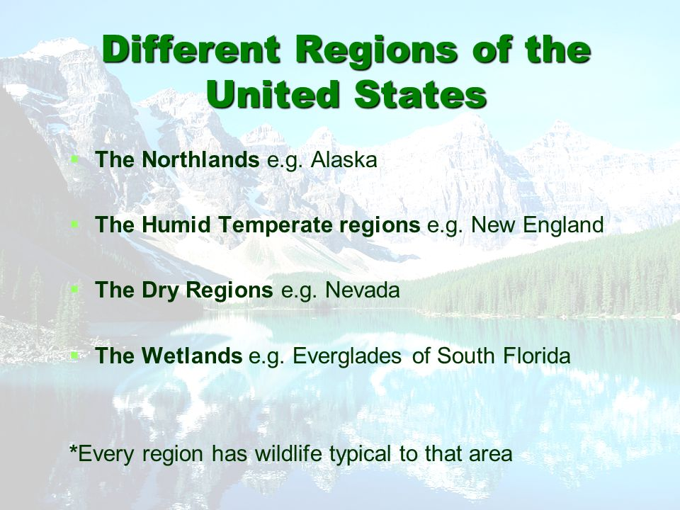 Different Regions of the United States   The Northlands e.g. Alaska   The Humid Temperate regions e.g. New England   The Dry Regions e.g. Nevada