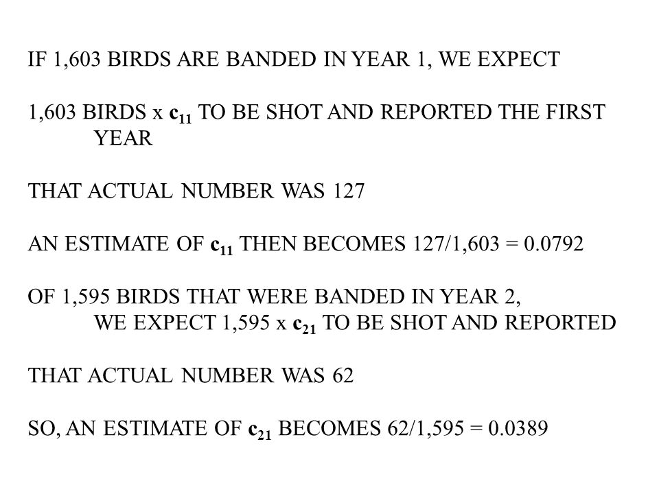 IF 1,603 BIRDS ARE BANDED IN YEAR 1, WE EXPECT 1,603 BIRDS x c 11 TO BE SHOT AND REPORTED THE FIRST YEAR THAT ACTUAL NUMBER WAS 127 AN ESTIMATE OF c 11 THEN BECOMES 127/1,603 = 0.0792 OF 1,595 BIRDS THAT WERE BANDED IN YEAR 2, WE EXPECT 1,595 x c 21 TO BE SHOT AND REPORTED THAT ACTUAL NUMBER WAS 62 SO, AN ESTIMATE OF c 21 BECOMES 62/1,595 = 0.0389