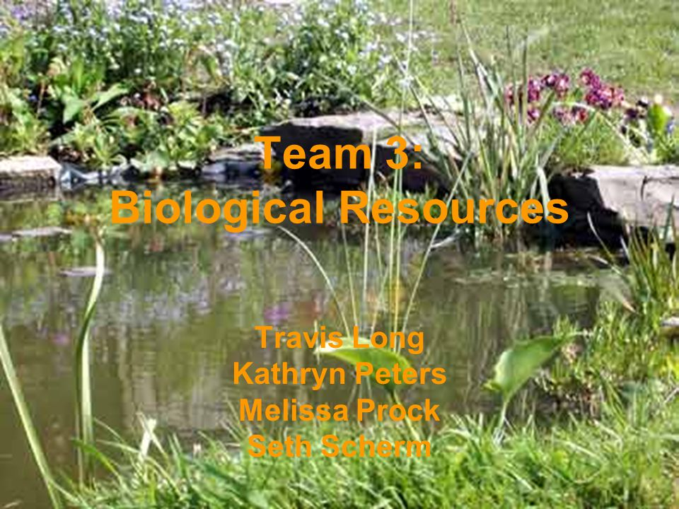 Team 3: Biological Resources Travis Long Kathryn Peters Melissa Prock Seth Scherm
