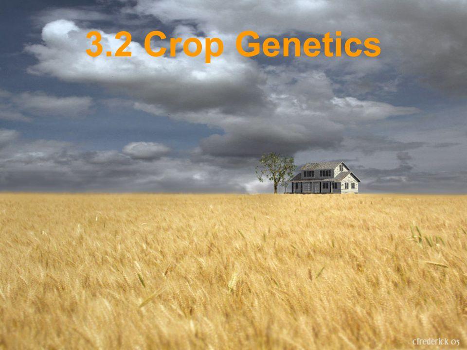 3.2 Crop Genetics