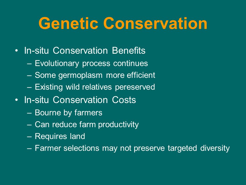 Genetic Conservation In-situ Conservation Benefits –Evolutionary process continues –Some germoplasm more efficient –Existing wild relatives pereserved In-situ Conservation Costs –Bourne by farmers –Can reduce farm productivity –Requires land –Farmer selections may not preserve targeted diversity