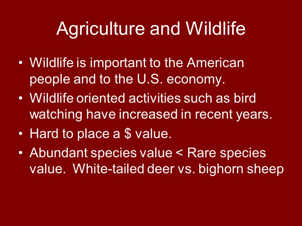 Agriculture and Wildlife Wildlife is important to the American people and to the U.S.