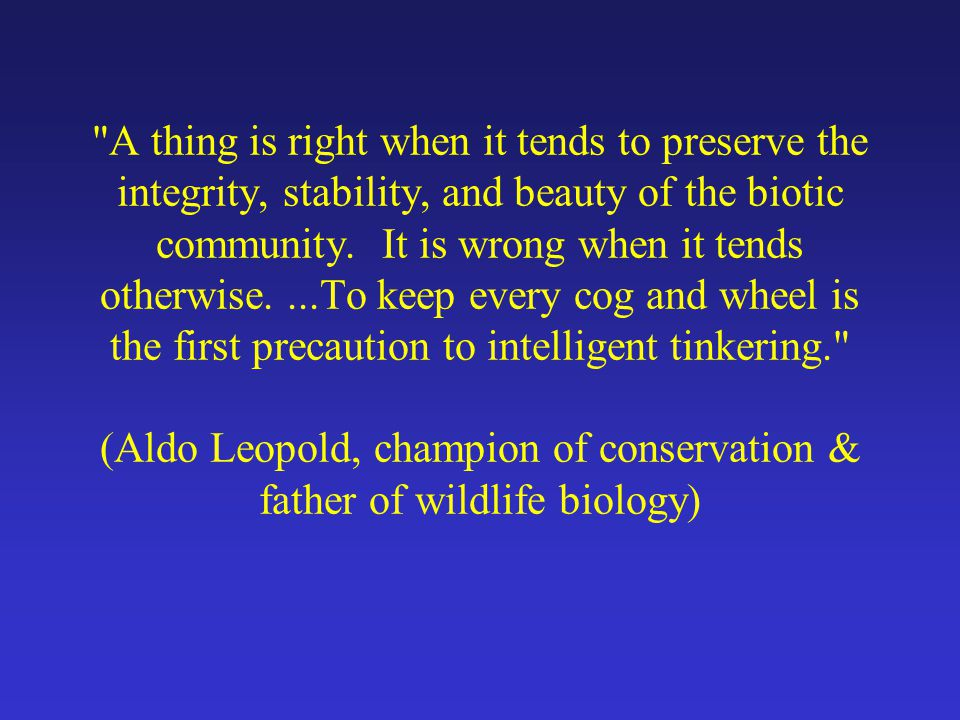 Importance of Management Finite natural resources (land, water, wildlife, fuel, etc…) Future generations inherit our world