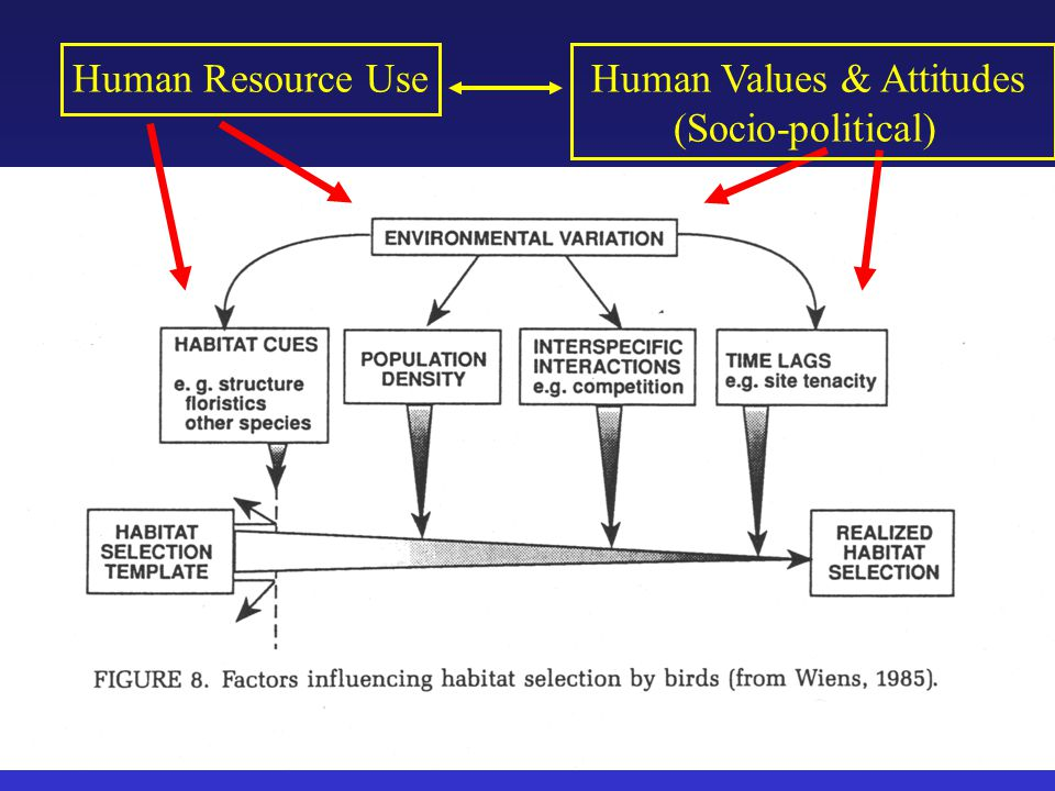 Human Resource UseHuman Values & Attitudes (Socio-political)
