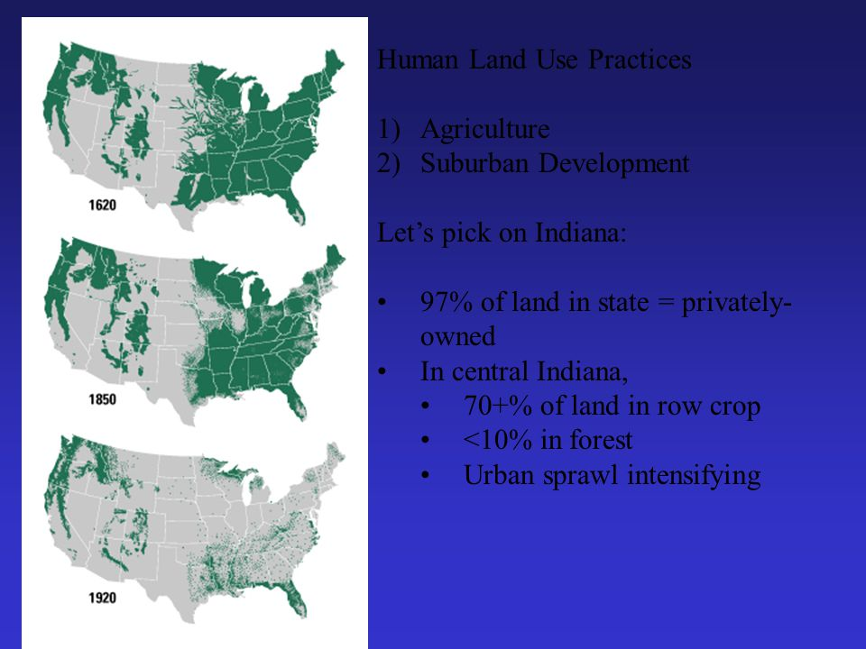 Human Land Use Practices 1)Agriculture 2)Suburban Development Let's pick on Indiana: 97% of land in state = privately- owned In central Indiana, 70+% of land in row crop <10% in forest Urban sprawl intensifying