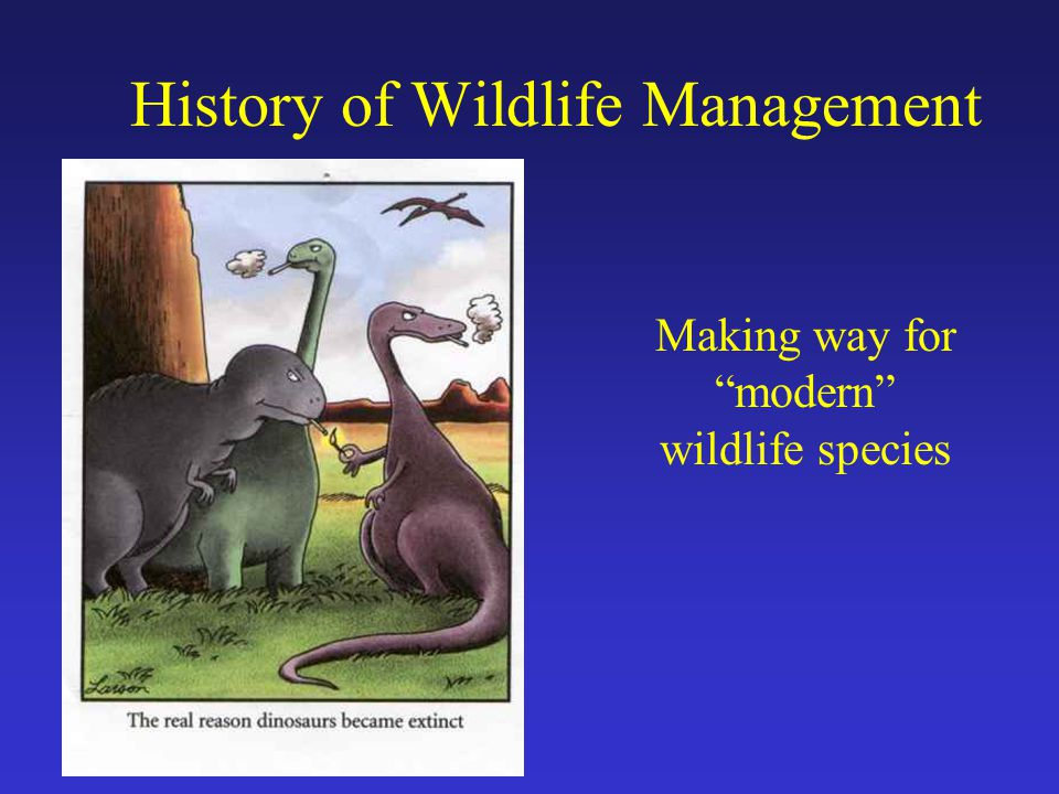Making way for modern wildlife species History of Wildlife Management
