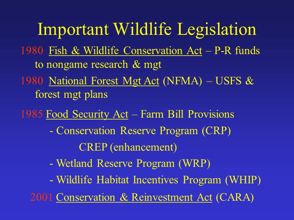 Important Wildlife Legislation 1980 Fish & Wildlife Conservation Act – P-R funds to nongame research & mgt 1980 National Forest Mgt Act (NFMA) – USFS & forest mgt plans 1985 Food Security Act – Farm Bill Provisions - Conservation Reserve Program (CRP) CREP (enhancement) - Wetland Reserve Program (WRP) - Wildlife Habitat Incentives Program (WHIP) 2001 Conservation & Reinvestment Act (CARA)