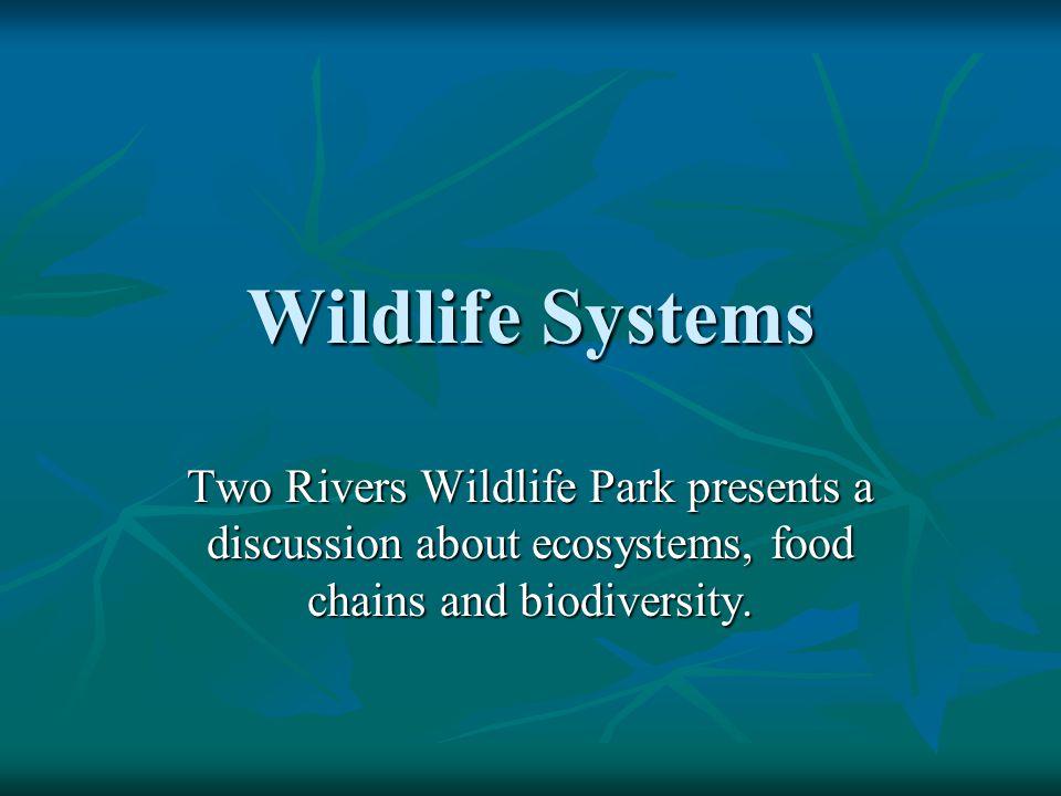 Wildlife is…..Wildlife includes wild mammals, birds, reptiles, and amphibians.