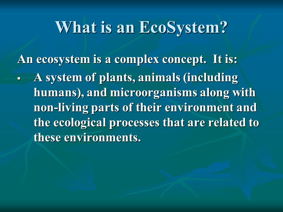 What is an EcoSystem. An ecosystem is a complex concept.