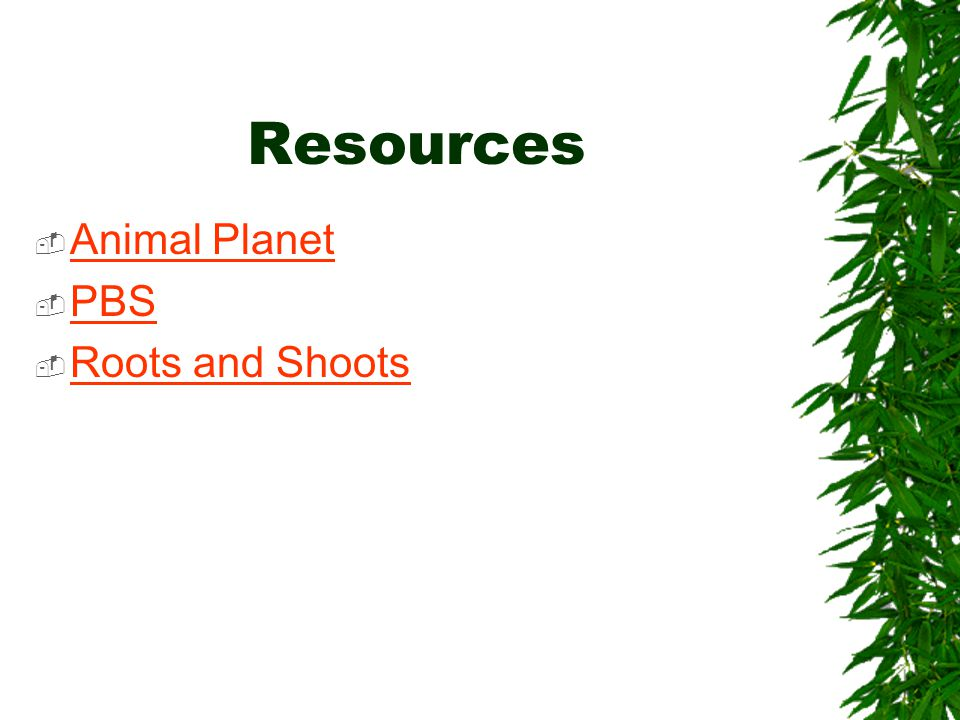 Resources  Animal Planet Animal Planet  PBS PBS  Roots and Shoots Roots and Shoots