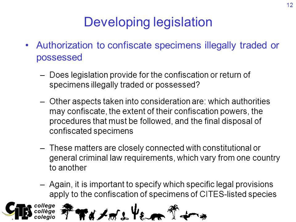 12 Developing legislation Authorization to confiscate specimens illegally traded or possessed –Does legislation provide for the confiscation or return