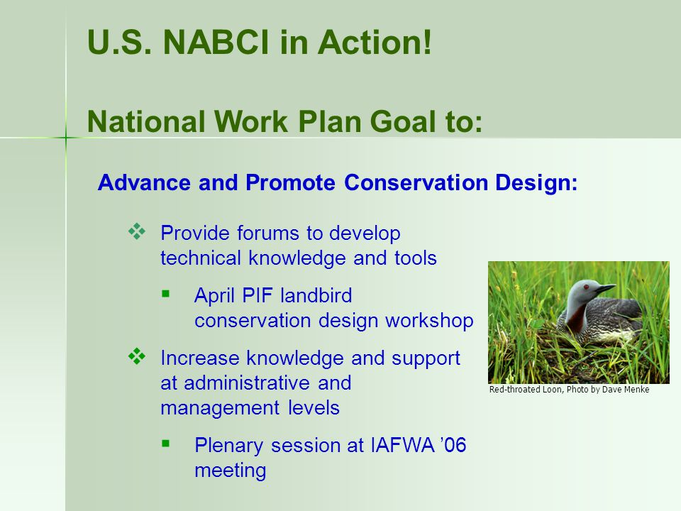  Provide forums to develop technical knowledge and tools  April PIF landbird conservation design workshop  Increase knowledge and support at administrative and management levels  Plenary session at IAFWA '06 meeting U.S.