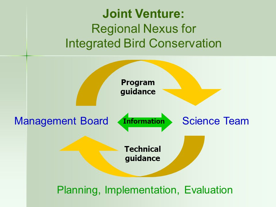 Joint Venture: Regional Nexus for Integrated Bird Conservation Management BoardScience Team Planning, Implementation, Evaluation Program guidance Tech