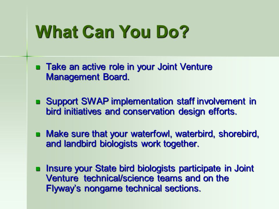What Can You Do? Take an active role in your Joint Venture Management Board. Take an active role in your Joint Venture Management Board. Support SWAP
