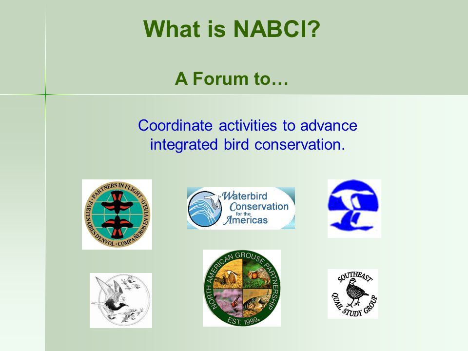 What is NABCI A Forum to… Coordinate activities to advance integrated bird conservation.