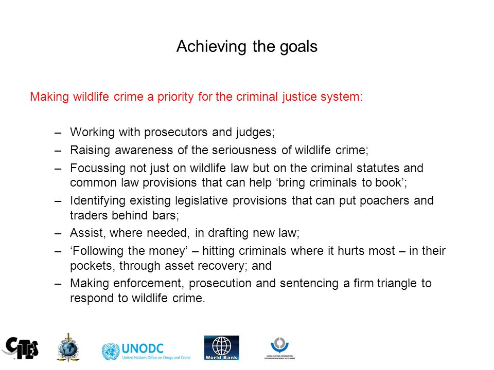 Achieving the goals Making wildlife crime a priority for the criminal justice system: –Working with prosecutors and judges; –Raising awareness of the seriousness of wildlife crime; –Focussing not just on wildlife law but on the criminal statutes and common law provisions that can help 'bring criminals to book'; –Identifying existing legislative provisions that can put poachers and traders behind bars; –Assist, where needed, in drafting new law; –'Following the money' – hitting criminals where it hurts most – in their pockets, through asset recovery; and –Making enforcement, prosecution and sentencing a firm triangle to respond to wildlife crime.