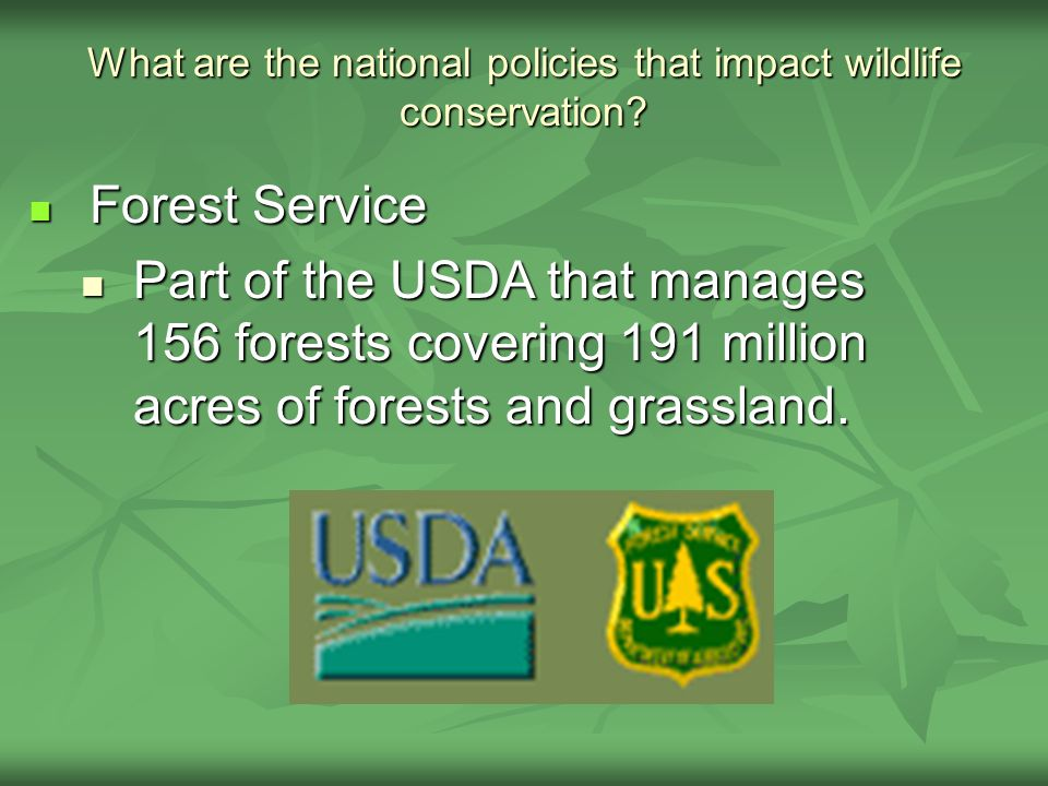 What are the national policies that impact wildlife conservation.