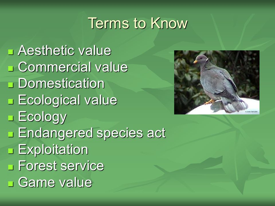 Terms to Know Aesthetic value Aesthetic value Commercial value Commercial value Domestication Domestication Ecological value Ecological value Ecology Ecology Endangered species act Endangered species act Exploitation Exploitation Forest service Forest service Game value Game value