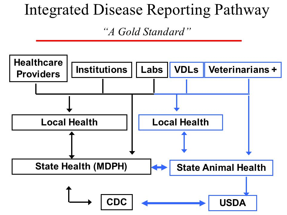 Integrated Disease Reporting Pathway A Gold Standard Local Health State Health (MDPH) CDC Healthcare Providers InstitutionsLabs State Animal Health Veterinarians +VDLs USDA Local Health