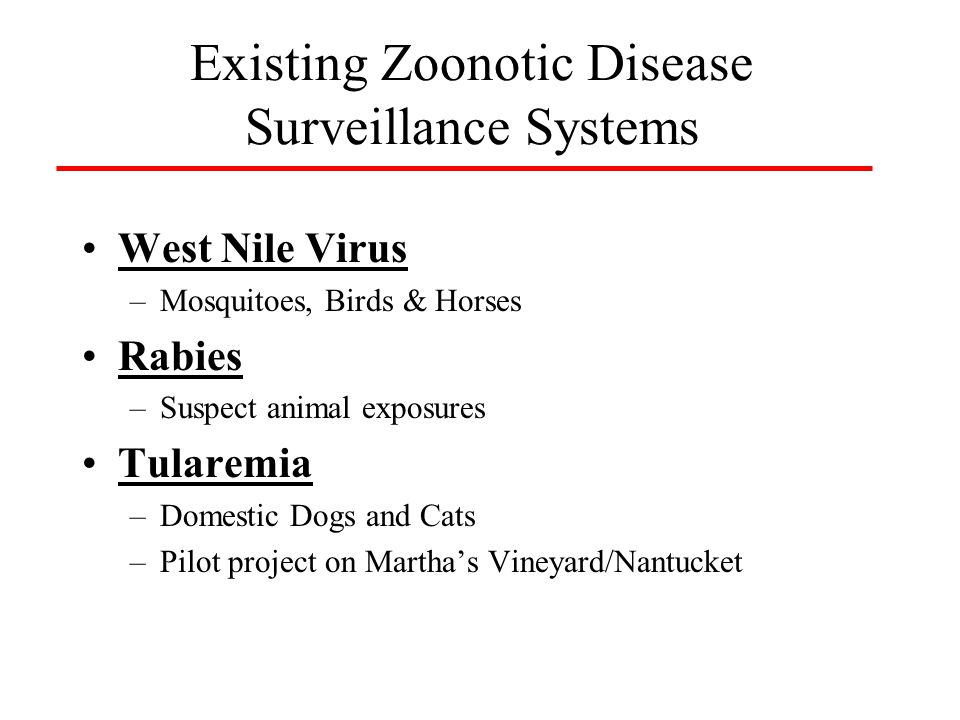 Project planning –Multi-agency: agriculture, wildlife, public health (epi & lab),veterinary school Limited scope –2 disease syndromes: Sudden death, CNS –4 diseases/agents: salmonella, ehrlichia, tularemia, arbovirus Protocol development Serum banking Sampling strategy development Necropsy guidelines and protocols Wildlife Surveillance & Serum Banking Tufts Veterinary School