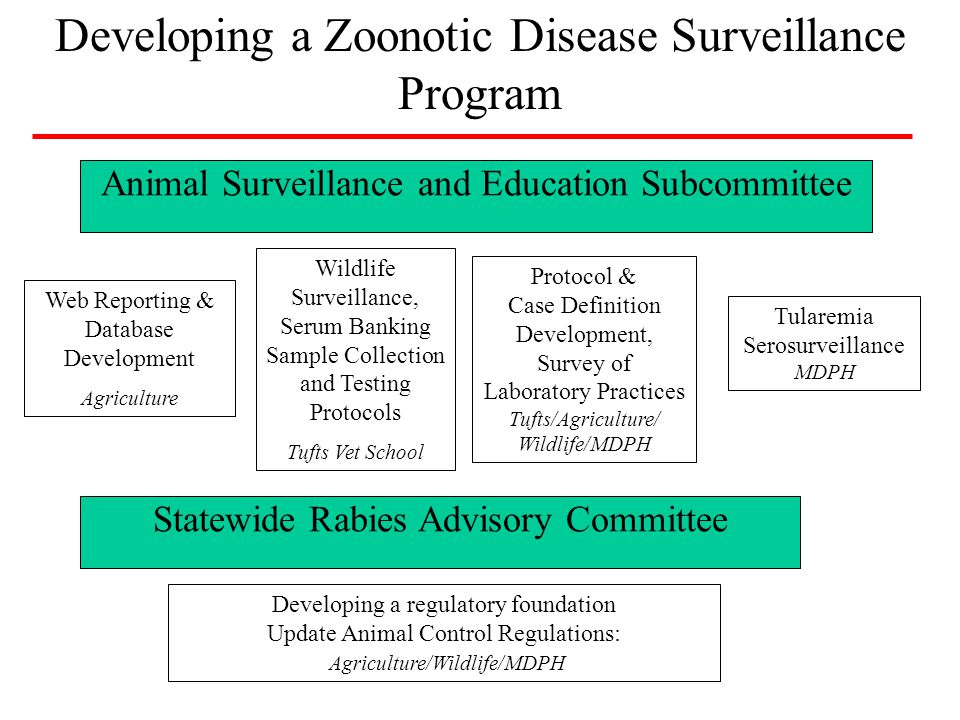 Review existing laws and regulations that apply to rabies and animal control Suggest changes to these laws and regulations to: –Improve efficiency and effectiveness of animal disease response and control –Increase flexibility and adaptability of system to address emergent zoonotic diseases in domestic pets, livestock and wildlife Legislative and Regulatory Review Rabies Advisory Committee Agriculture/Wildlife/MDPH