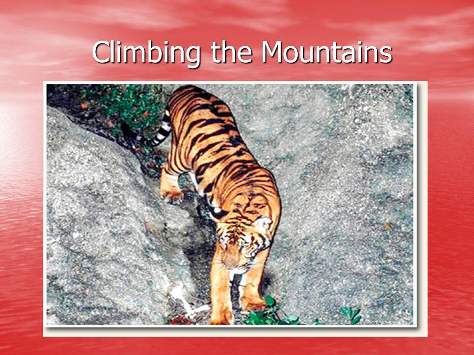 Climbing the Mountains Climbing the Mountains