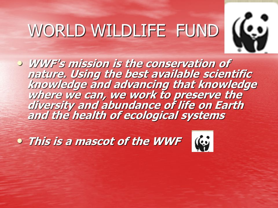 WORLD WILDLIFE FUND WORLD WILDLIFE FUND WWF's mission is the conservation of nature. Using the best available scientific knowledge and advancing that
