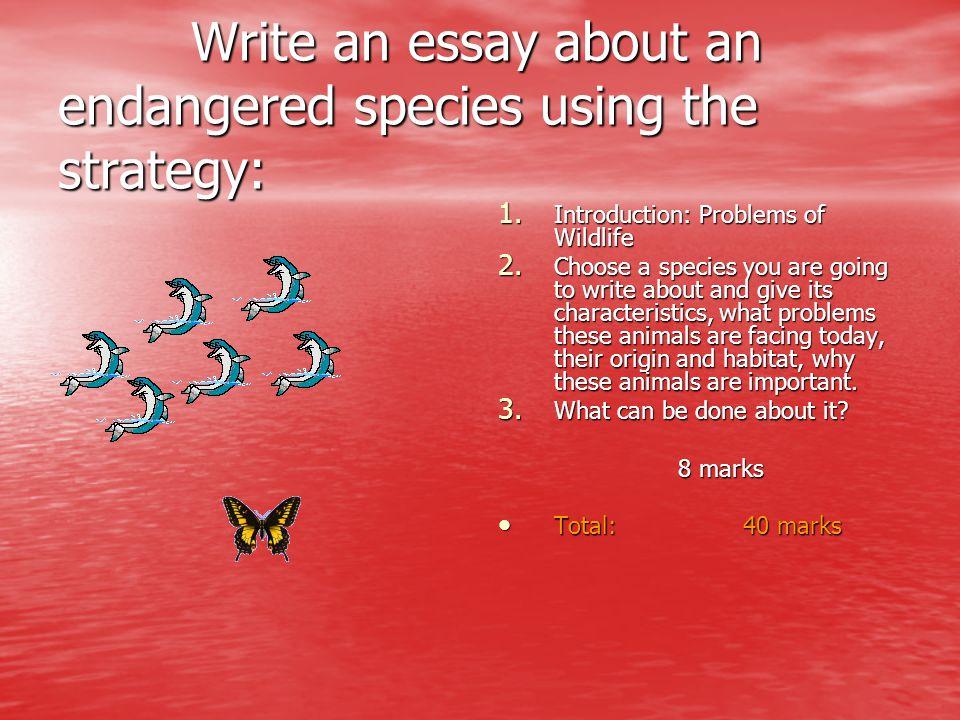 Write an essay about an endangered species using the strategy: Write an essay about an endangered species using the strategy: 1. Introduction: Problem