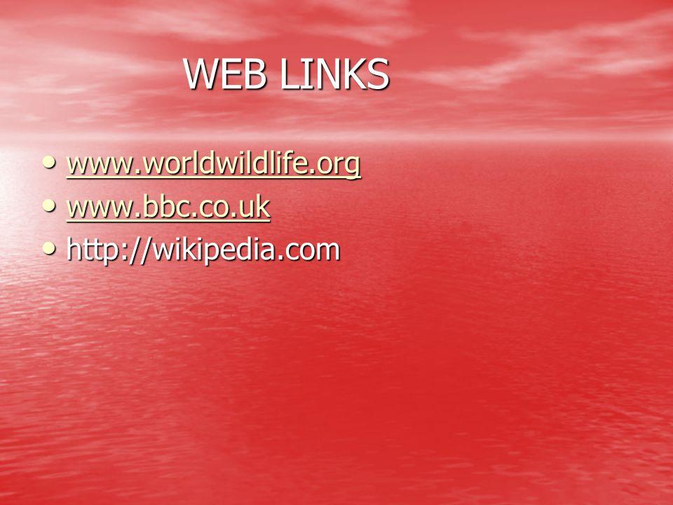 WEB LINKS WEB LINKS www.worldwildlife.org www.worldwildlife.org www.worldwildlife.org www.bbc.co.uk www.bbc.co.uk www.bbc.co.uk http://wikipedia.com h