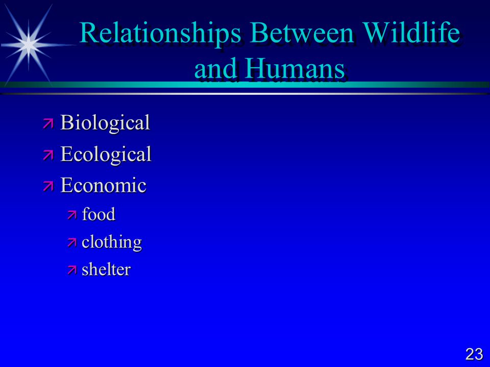23 Relationships Between Wildlife and Humans  Biological  Ecological  Economic  food  clothing  shelter