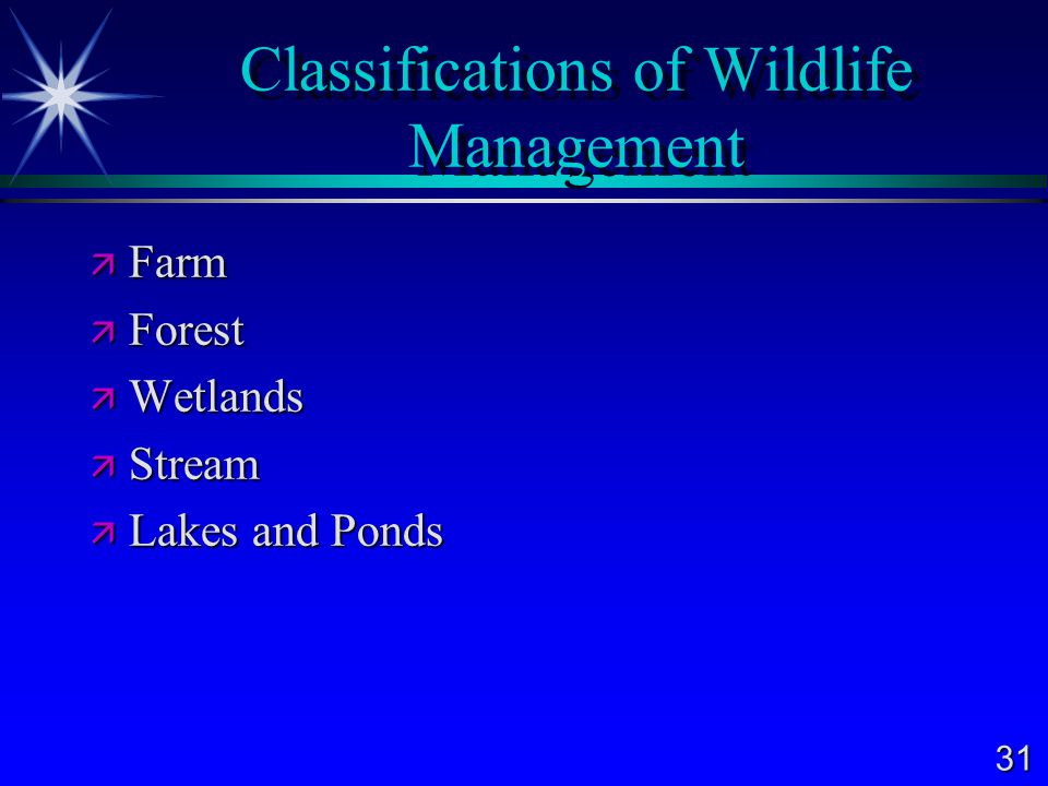 31 Classifications of Wildlife Management  Farm  Forest  Wetlands  Stream  Lakes and Ponds