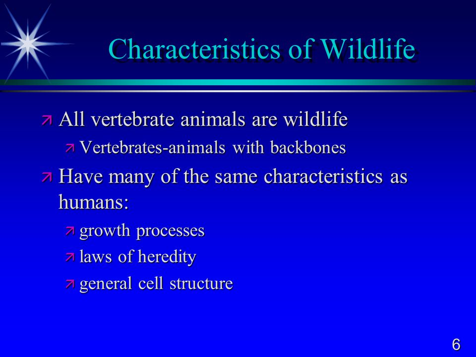6 Characteristics of Wildlife  All vertebrate animals are wildlife  Vertebrates-animals with backbones  Have many of the same characteristics as humans:  growth processes  laws of heredity  general cell structure