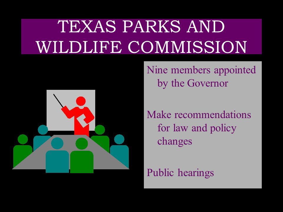 TEXAS PARKS AND WILDLIFE COMMISSION Nine members appointed by the Governor Make recommendations for law and policy changes Public hearings