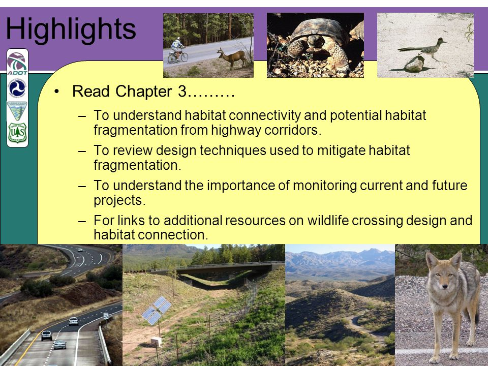 17 Read Chapter 3……… –To understand habitat connectivity and potential habitat fragmentation from highway corridors.