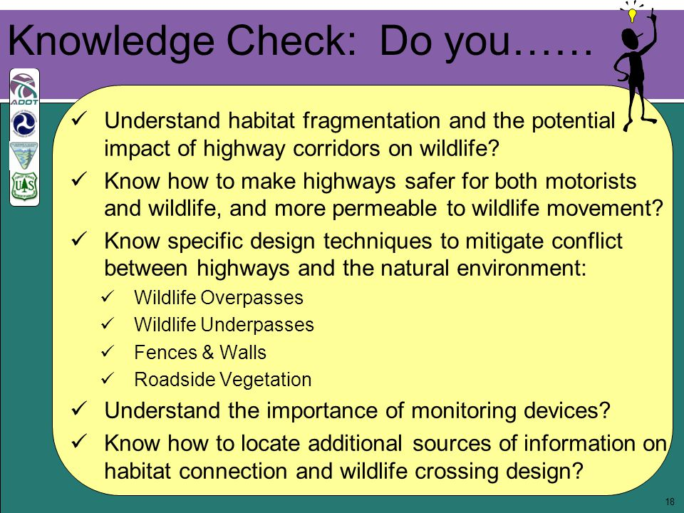 18 Knowledge Check: Do you…… Understand habitat fragmentation and the potential impact of highway corridors on wildlife.